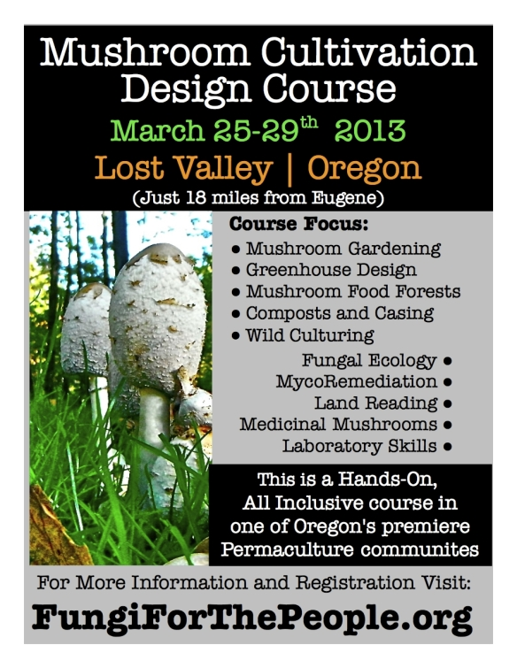 Mushroom Cultivation Design Course