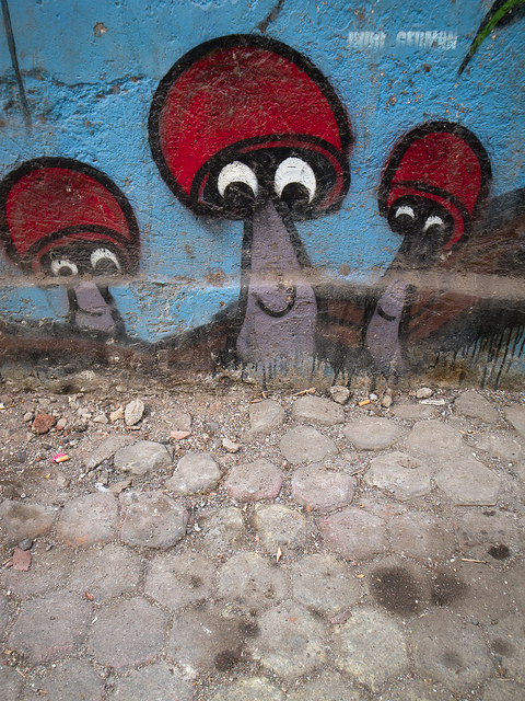 mushroomstreetart21