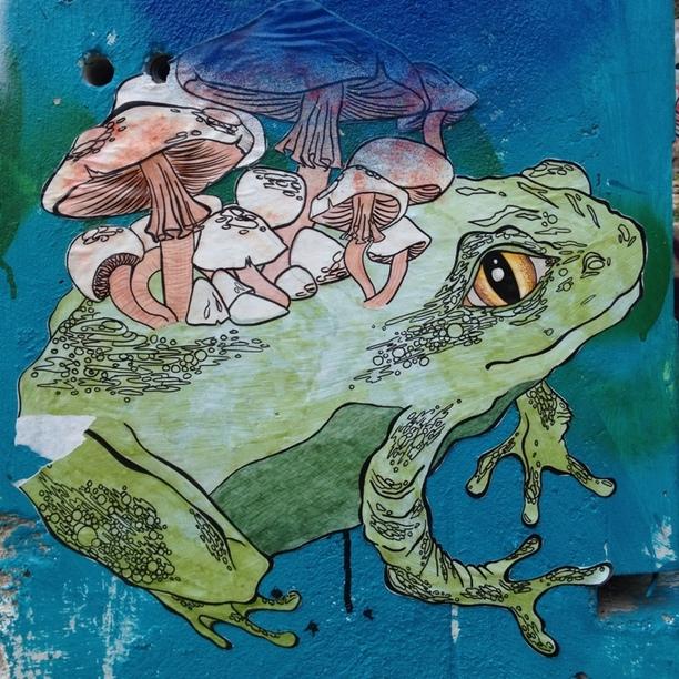 Mushroom Street Art | Austin, Tx