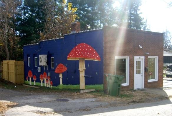 MushroomStreetArt9Ashville