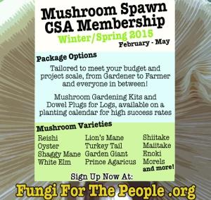 Mushroom CSA