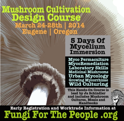Mushroom Cultivation Design Course | March 2014 | Eugene, Oregon