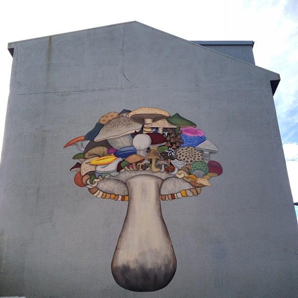 Mushroom Street Art | Iceland
