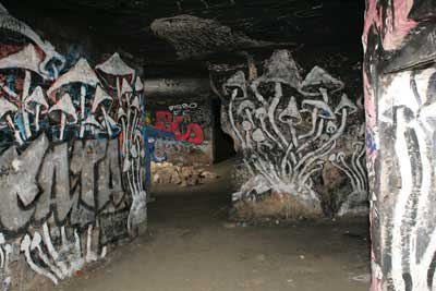 Mushroom Street Art | Paris underground