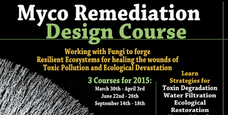 Mycoremediation Course Shorty copy