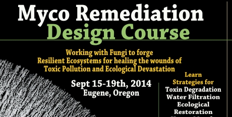 Mycoremediation Course