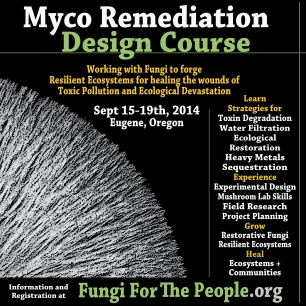 Mycoremediation Design courseCourse Flier
