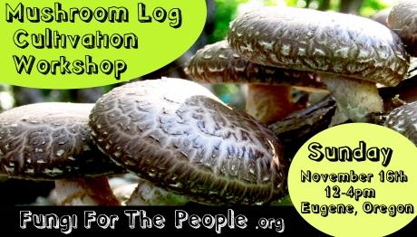 Mushroom Log Workshop