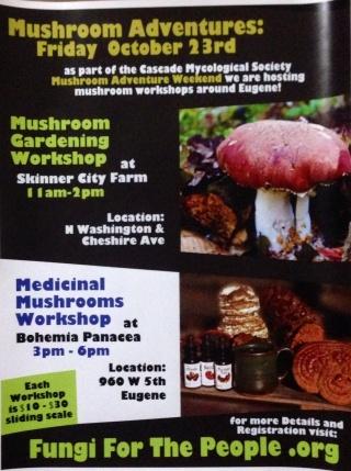 mushroom flyer